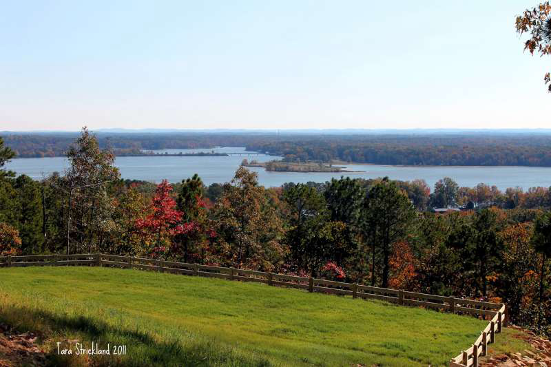 bluffs of weiss lake real estate bluffs fall photo contest winners